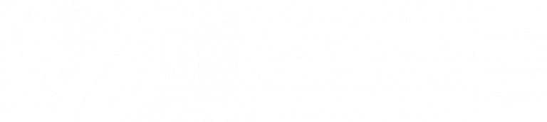 Virtual Information Technology (VIT)